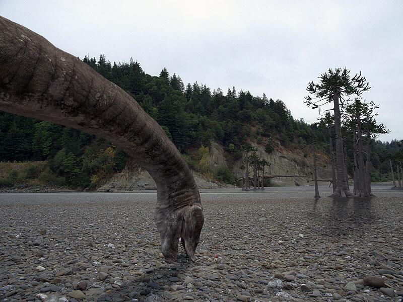 Bild zu Dinosaurier: Seismosaurus