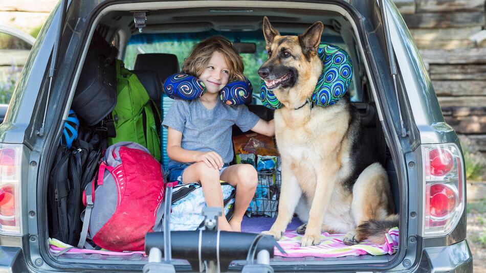 Auto mit Kind und Hund